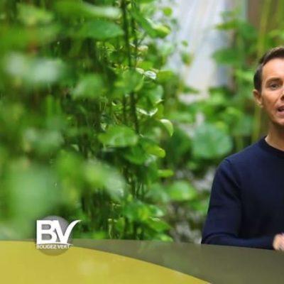 Présentateur de Bougez Vert à Angers